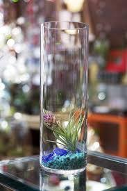 terrarium table tall table top terrarium with sea glass u2013 earth speaks