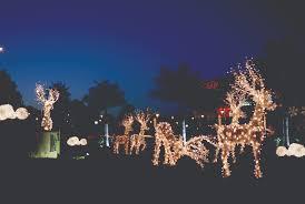led christmas lights expert outdoor lighting advice