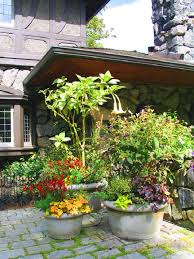 Outdoor Container Gardening Ideas Patio Container Garden Ideas Home Design Ideas And Pictures