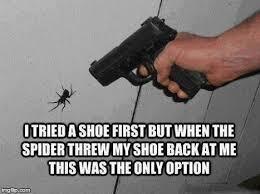 Funny Spider Meme - spider attack imgflip