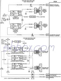 dual electricn wiring diagram with hvac relay to fan auto repair