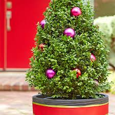 Military Christmas Decorations Outdoor by Christmas Planter Ideas