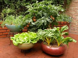Creative Vegetable Gardens by Container Vegetable Gardens Gardening Ideas
