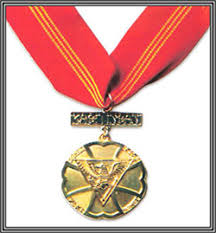 pnp awards and medals