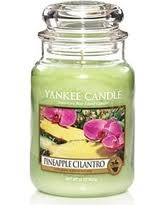 slash prices on yankee candle r evergreen 22oz jar candle green