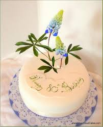floral cakes for all occasions by silver cloud cakes
