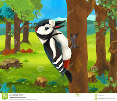 cartoon animal scene woodpecker stock illustration image 47735792