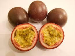 amazon com sweet passion fruit seeds 10 seeds high