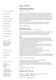 marketing manager resume exles marketing manager cv sle sales caigns promotions managerial