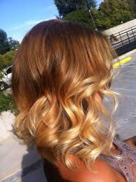 Light Brown Dye Brown To Blonde Ombre Hair Color Dye