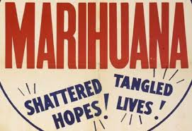 where does the word marijuana come from weedist