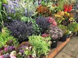 ordering flowers ordering flowers charles company llc