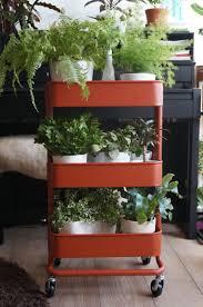 i got an ikea cart for more plants indoorgarden