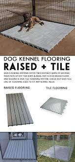 best 25 kennel flooring ideas on kennels