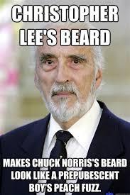 Chuck Norris Beard Meme - th id oip 0emnvtecpsluyojemjctzqhalg