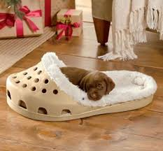 pizza dog bed breathtaking ridiculous beds photos best ideas exterior oneconf us