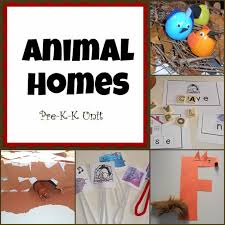 animal homes archives knock it off kim