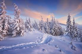 winter cabin 10 winter cabin getaways explore magazine