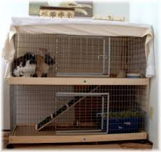 Diy Indoor Rabbit Hutch Why A Big Indoor Rabbit Cage Is Good For Your Bunny