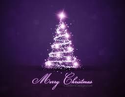 winter lights winter nature purple christmas tree sparkle