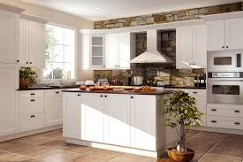 Stone Backsplashes For Kitchens by Furniture Breathtaking Rta Kitchen Cabinets With Stone Backsplash