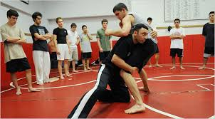 Mixed Martial Arts Makes Its Way to High School The New York Times