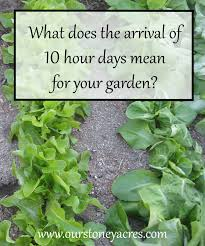 what does the arrival of 10 hour days for your garden