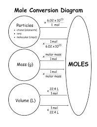 conversion practice worksheet astonishing molar mass practice worksheet 1 to 5