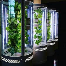this is why growing food inside is going mainstream