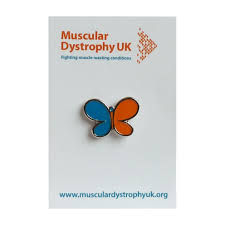 butterfly pin badge blue and orange