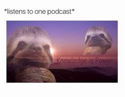 Funny Sloth Pictures Meme - funny sloth memes tumblr