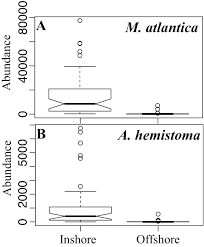 high spatial heterogeneity of two planktonic cnidarian species