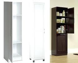 Ikea Kitchen Storage Cabinets Ikea Tall Storage Cabinet For Interesting Best 25 Kitchen