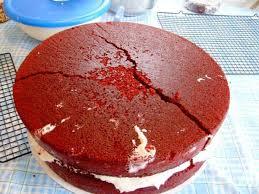 cake balls veronica u0027s cornucopia