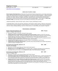 controller resume example doc 8091049 inventory control manager resume inventory control resume controller inventory specialist resume exle inventory control manager resume unforgettable assistant manager resume examples