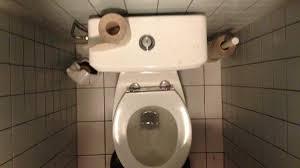 it u0027s totally ok to sit on public toilet seats broadly