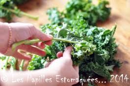 comment cuisiner le chou vert frisé chou kale vert frisé que faire avec les papilles