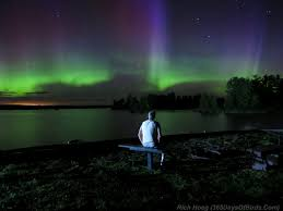 Northern Lights Minneapolis August 2014 365 Days Of Birds