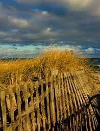 another beautiful beach fence at nauset beach in orleans on cape