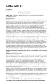 Resume Samples For Sales Manager by International Sales Manager Resume Samples Visualcv Resume