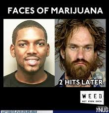 Funny Memes About Weed - funny weed memes grasscity forums