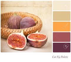 100 colour style march 2016 cushie number style aishwarya