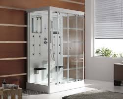 steam shower the torino