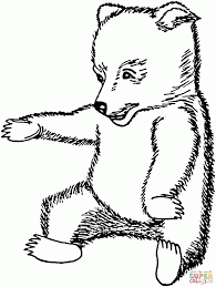 funny brown bear cub coloring pages animal creative brown