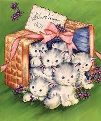 99 best birthday cats images on pinterest birthday cats vintage