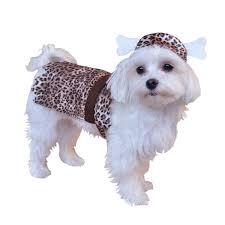 cave or cave man halloween dog costume costumes for dogs