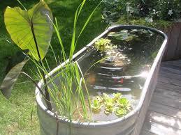 Galvanized Containers For Gardening Water Gardens U2013 New Gardening Ideas