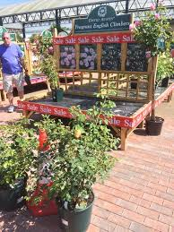 487 best nursery display ideas images on pinterest garden center