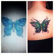 butterfly cover up pink black shading green purple color fix
