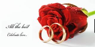 red rose rings images Wedding rings red rose flower celebrate love photo about art jpg